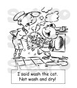 II said wash the cat. Not wash and dry!