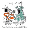 Call Mold Busters